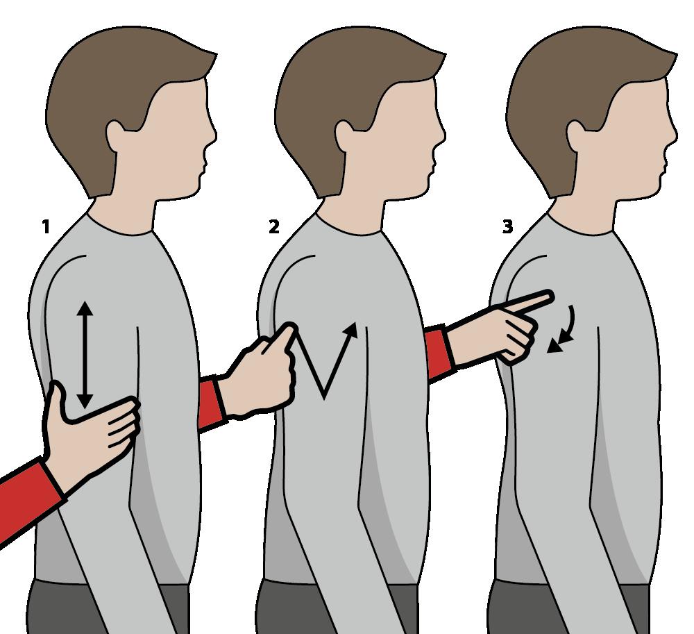 signalen för rött vin, illustration