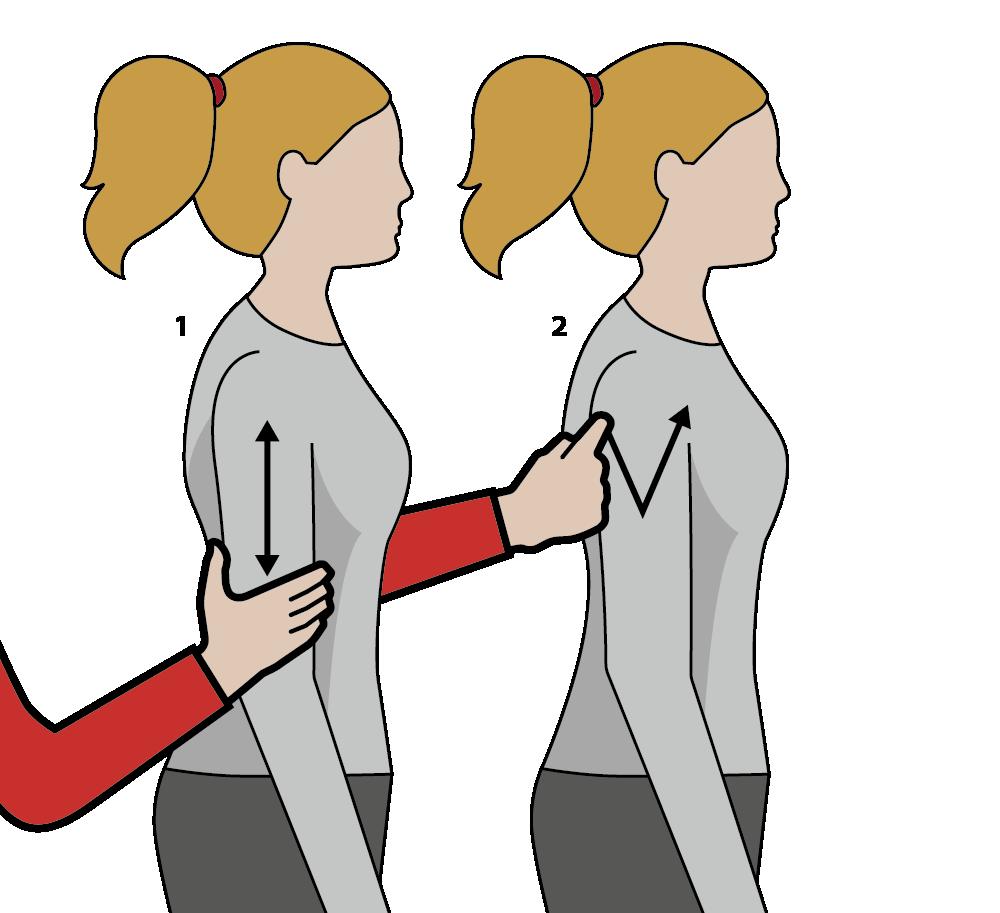 signalen för vin, illustration