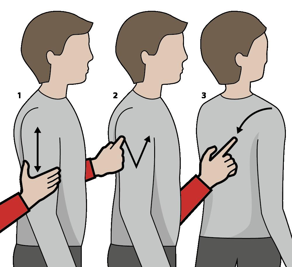 signalen för vitt vin, illustration