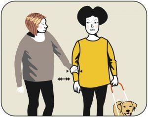 Illustration av signalen för att korrigera hunden, alternativ 1