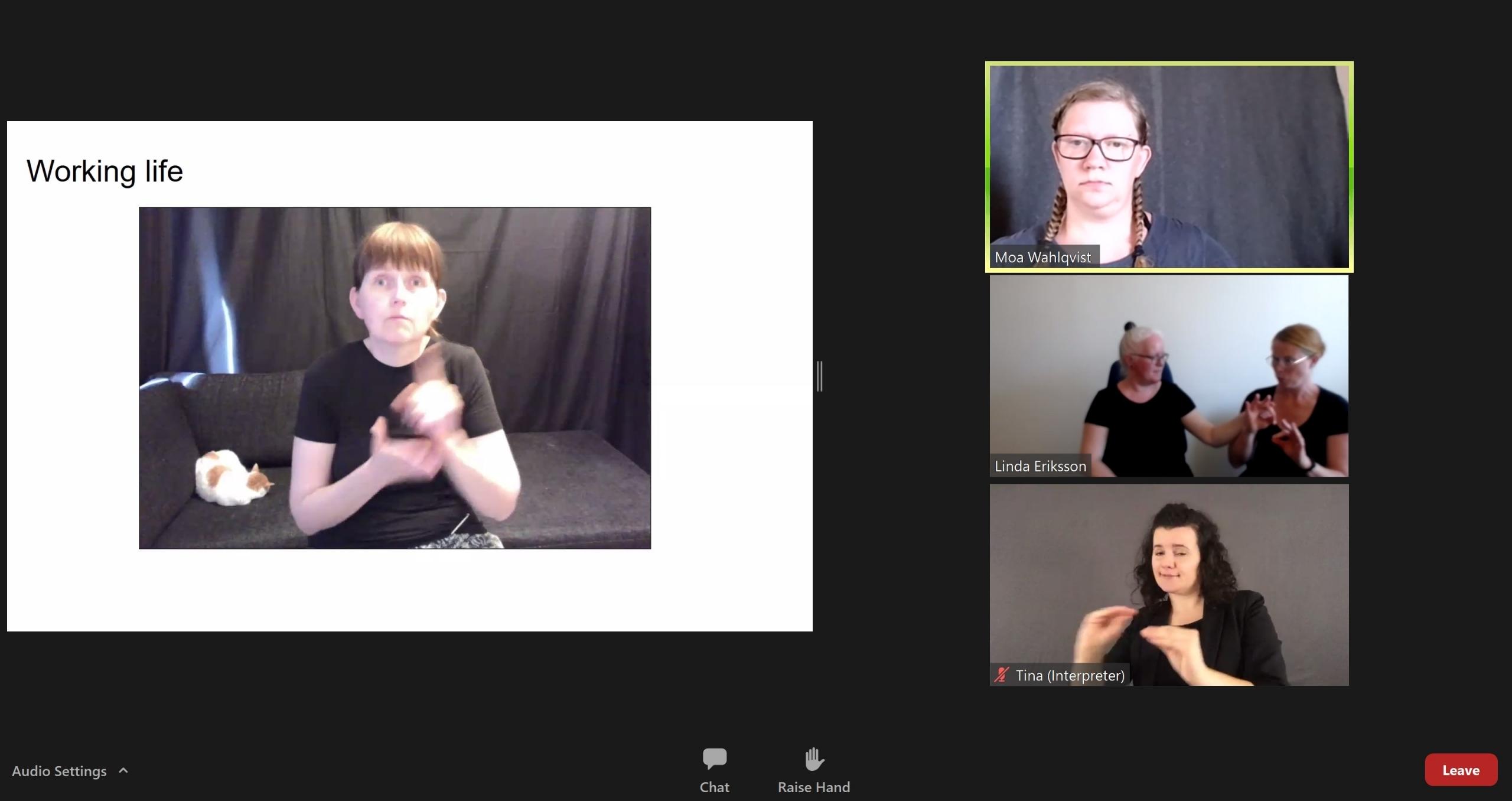 bilden visar hur det såg ut på webbinariet.
