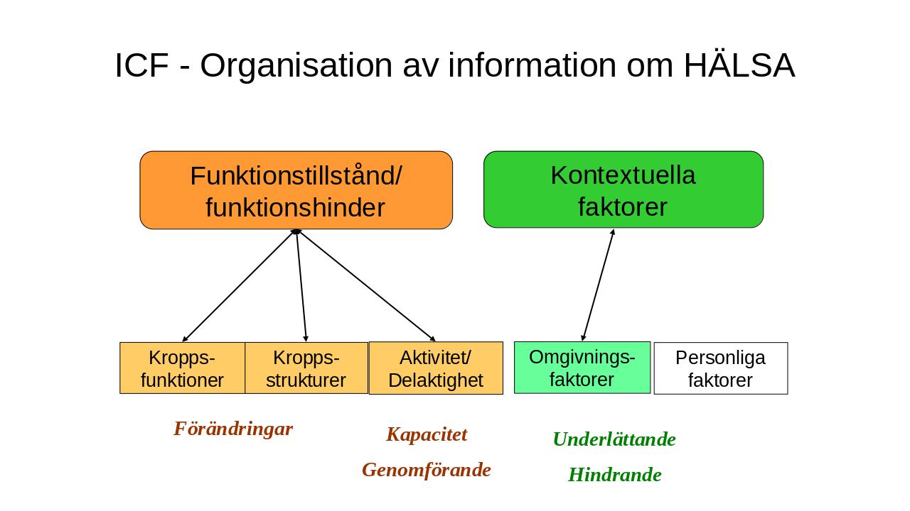 Organsiationsbild av ICF
