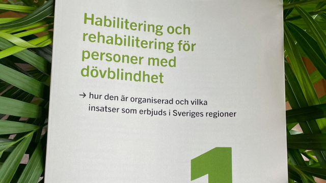 foto: framsida rapport, fond med gröna blad