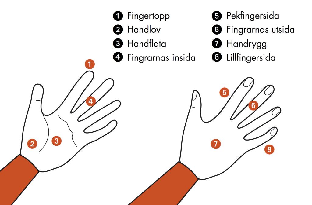 Illustration av handens olika kontaktytor