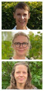 foto: ansikten på tre kvinnor staplade i höjdled